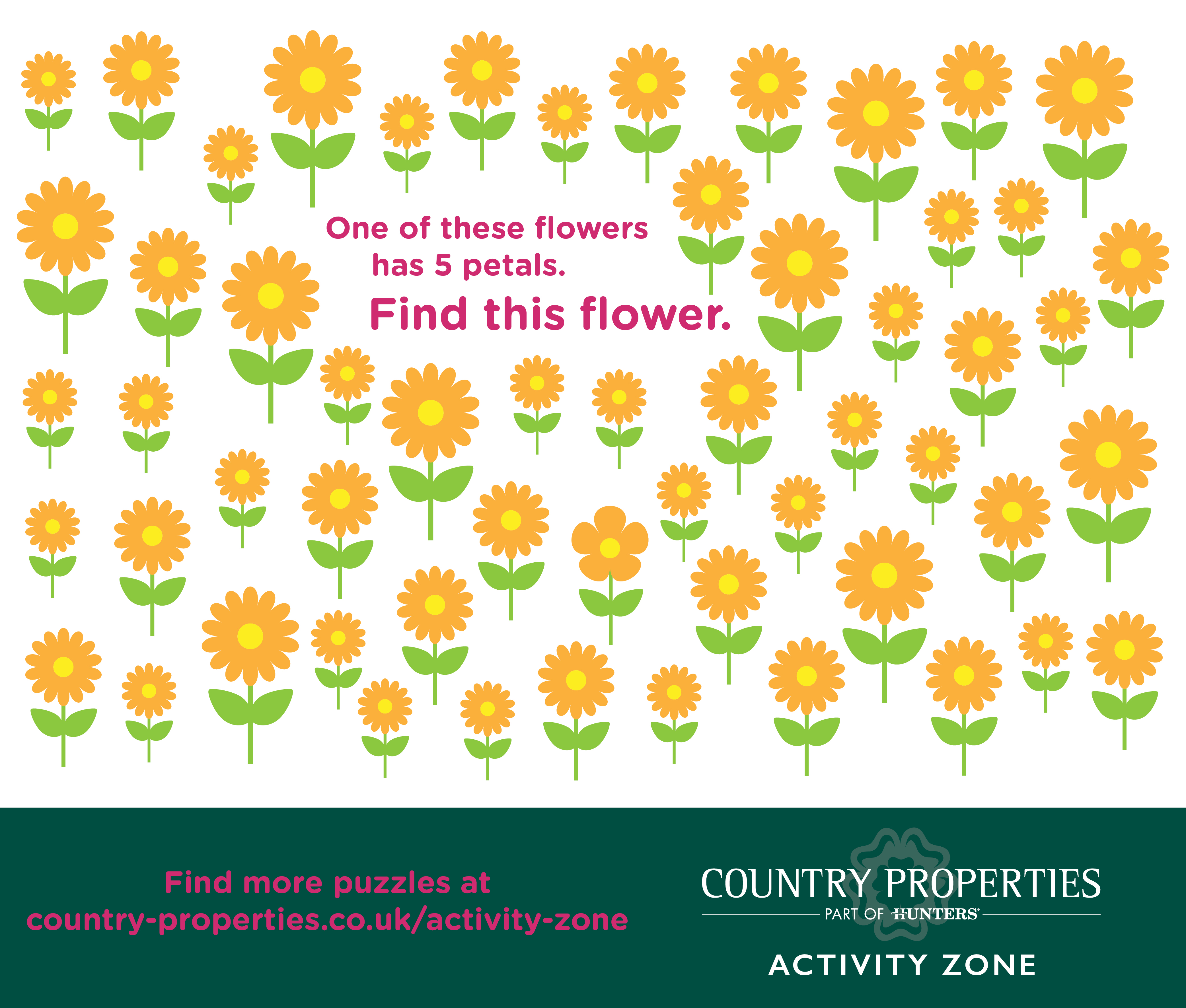 Country Properties - Activity Zone - 5 Flowers.jpg