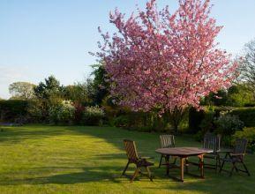 relaxation-garden-grass-spring-59321.jpg