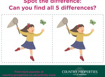 Country Properties - Activity Zone - Spot the Difference.jpg